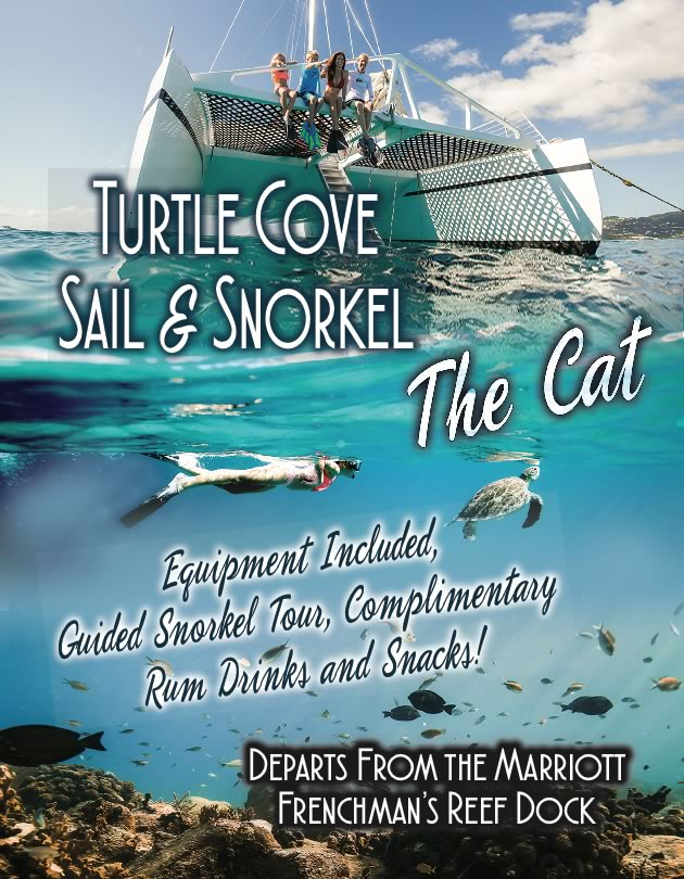 turtle cove sail snorkel saint thomas usvi