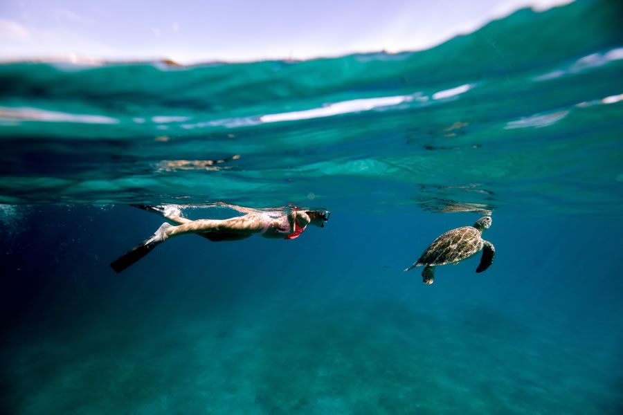 Photo Gallery The VI Cat Snorkel and Catamaran Sail Tours ...